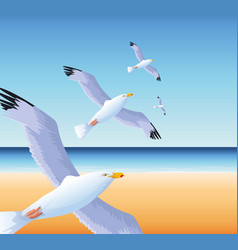 Summer time in beach vacations flying seagulls vector