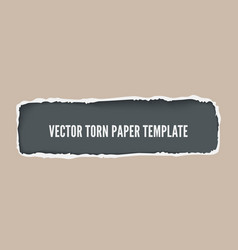 torn paper with ripped edges banner vector image