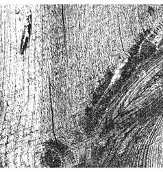 Very Grainy Wood Texture vector image