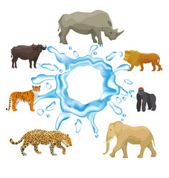 Wild animals with splash water isolated on vector