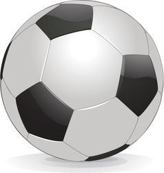soccer ball isolated on white background vector image