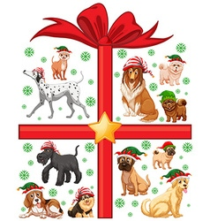 Christmas theme with cute dogs and present box vector