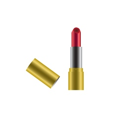 Red lipstick with gold case cover icon vector