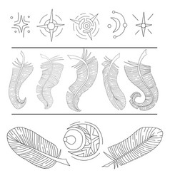 set of feathers and stars vector image