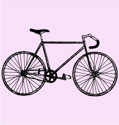 Sport bicycle vector