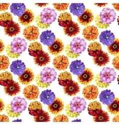 Watercolor zinnia pattern vector