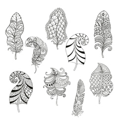 Zentangle stylized nine feathers for coloring page vector image