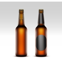 Set of closed blank glass bottles with light beer vector