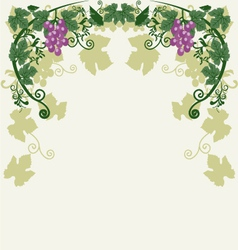 Decorative grapes vector image