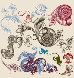 collection of floral decorative elements vector image