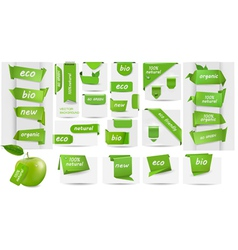 Collection with Eco tags and labels and stickers vector image