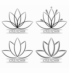 floral lotus flower logo abstract vector image