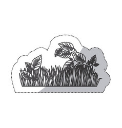grayscale contour sticker of field grass and vector image