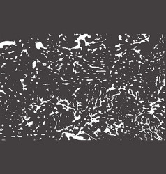 Grunge texture distress black grey rough trace b vector