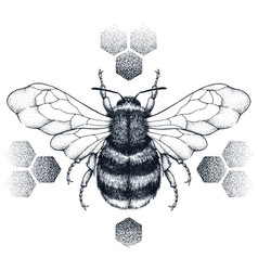 Striped honey bee sits on honeycombs tattoo vector