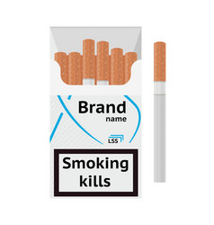 Traditional cigarettes tobacco products in package vector
