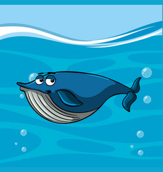 blue whale swims under the sea vector image