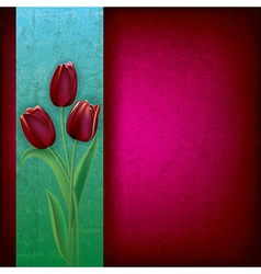 abstract purple grunge background with red tulips vector image