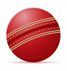 Ball for cricet vector