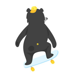 cartoon black cool bear vector image