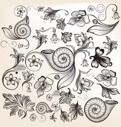 collection of calligraphic elements and swirls vector image