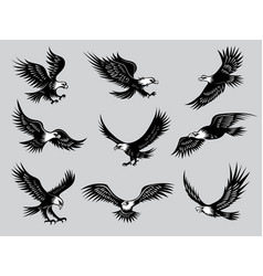 flying eagles silhouettes birds wild hawks vector image