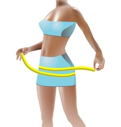 girl measuring hips vector image vector image