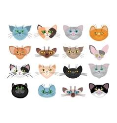 Cute cat faces vector image