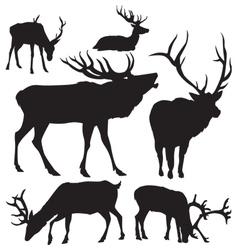 deer silhouettes 2 vector image