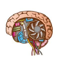 Ai cyberntic brain side view color vector