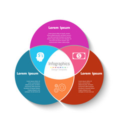 circle infographic template business concept vector image