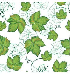 seamless pattern grape leaves vector image