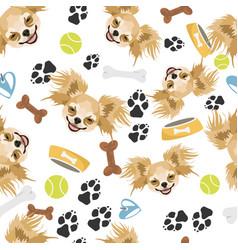 smiling dog chihuahua vector image