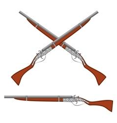 Ancient rifles vector image vector image