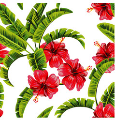 banana tree hibiscus draw pattern vector image
