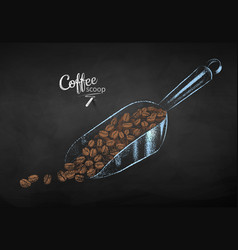 chalk sketch coffee scoop with beans vector image