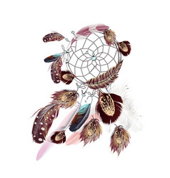 fashion bohemian dreamcatcher with feathers vector image