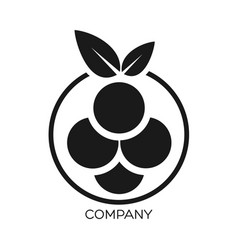 modern berry logo vector image