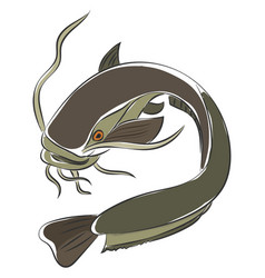 Painting a grey-colored catfish or color vector