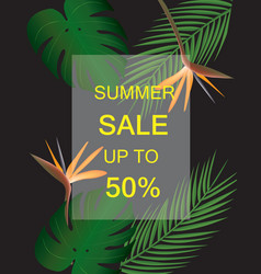 Summer sale poster with tropical leaf vector