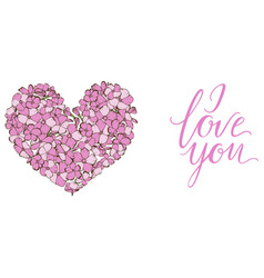 Heart of gently pink phlox flowers isolated vector