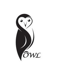 owl design on white background bird animals vector image
