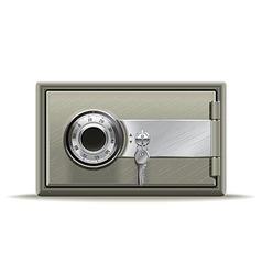 Safe deposit vector image vector image
