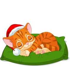Christmas Kitten Sleeping vector image