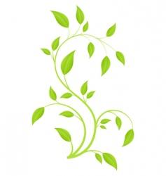 green branch vector image vector image