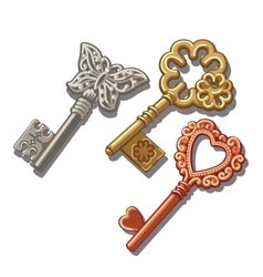Keys with butterfly circle and heart ornament vector