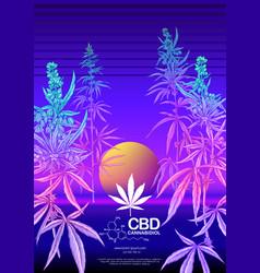 hemp cannabis plant template poster card vector image
