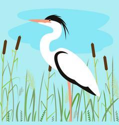 heron walking flat style vector image