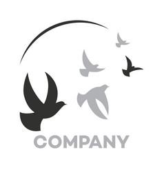 modern dove logo vector image
