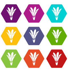 nature flower icons set 9 vector image